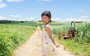 Discover the Heart of Okinawa
